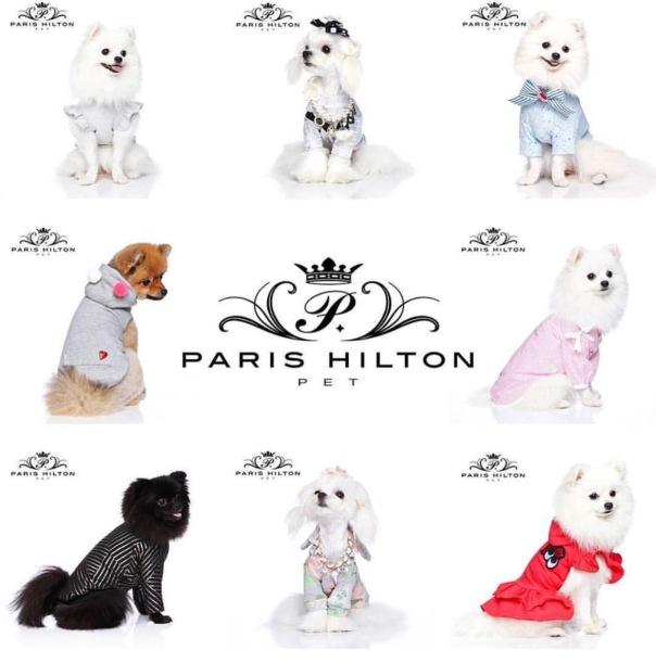 #ParisHiltonPet 2017 launch - Westpoppn.com