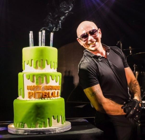 Pit bull - birthday bash - Westpoppn.com